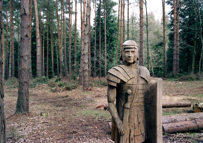 Broxbourne Wood - Centurion Carving  Spirng 2006