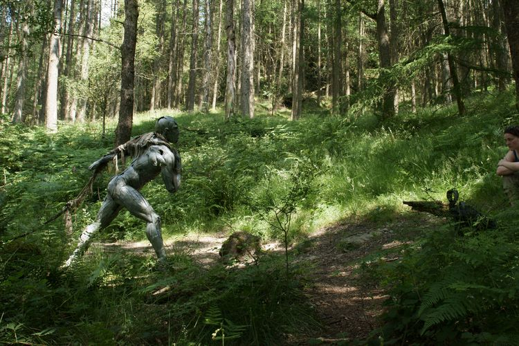 Grizedale Forest-4